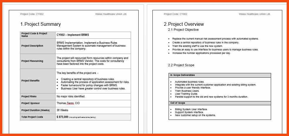 project summary template | program format