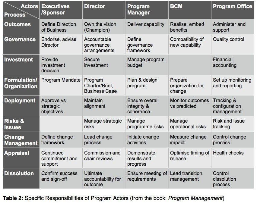 The program management actors | Project Manager
