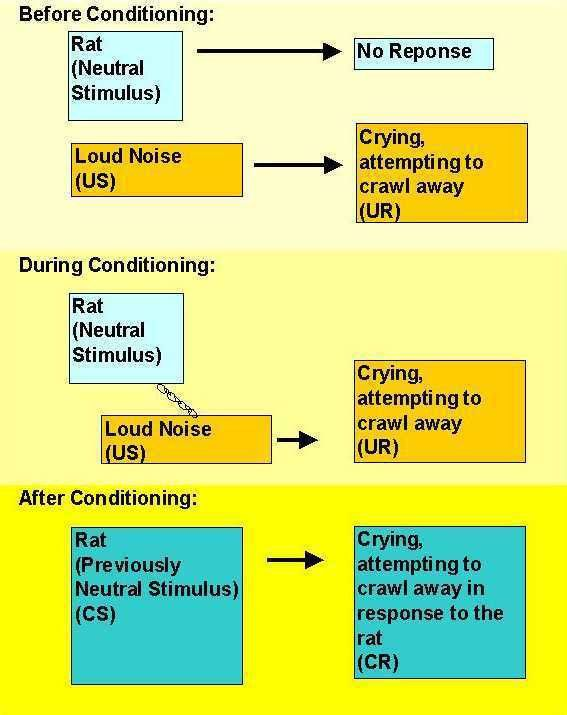 Classical Conditioning, part 3
