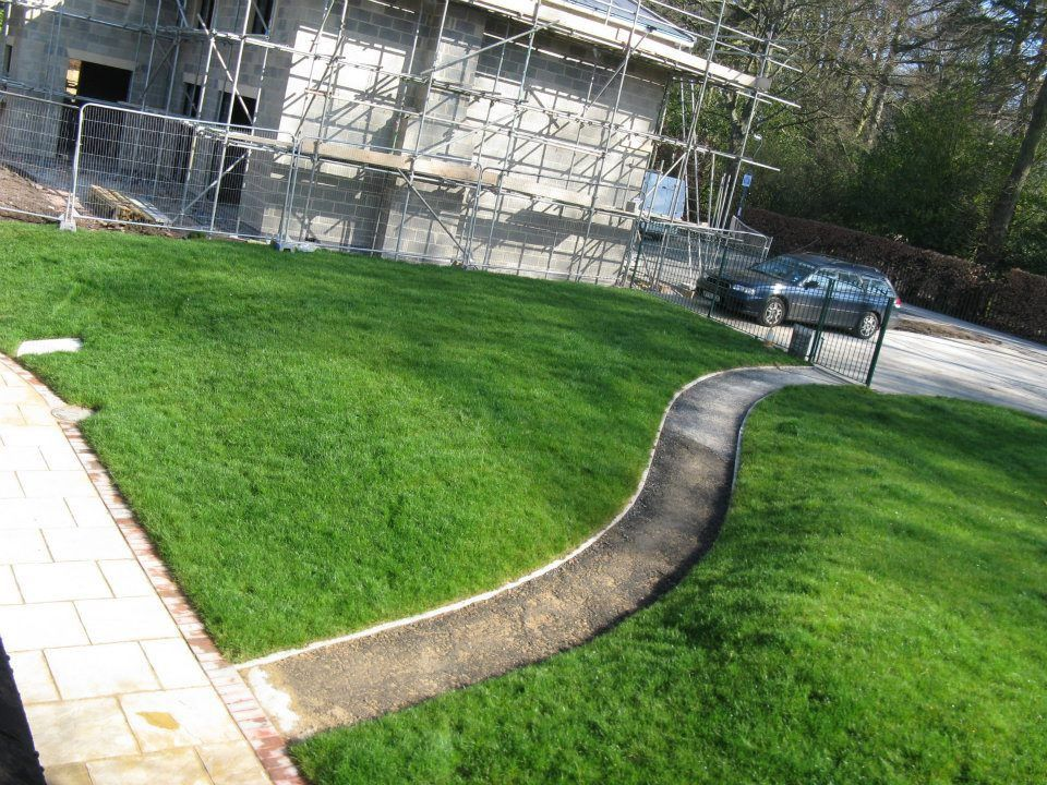 Winter Lawn Care Tips - Andover Turf Supplies