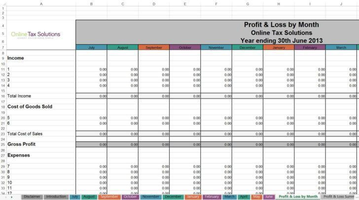Self Employed Profit And Loss Form Profit And Loss Template 18