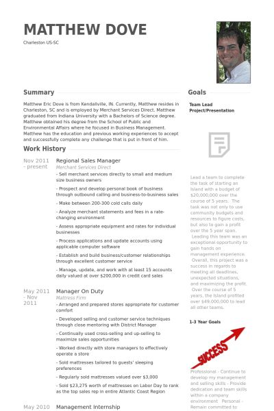 Cv writing for sales manager