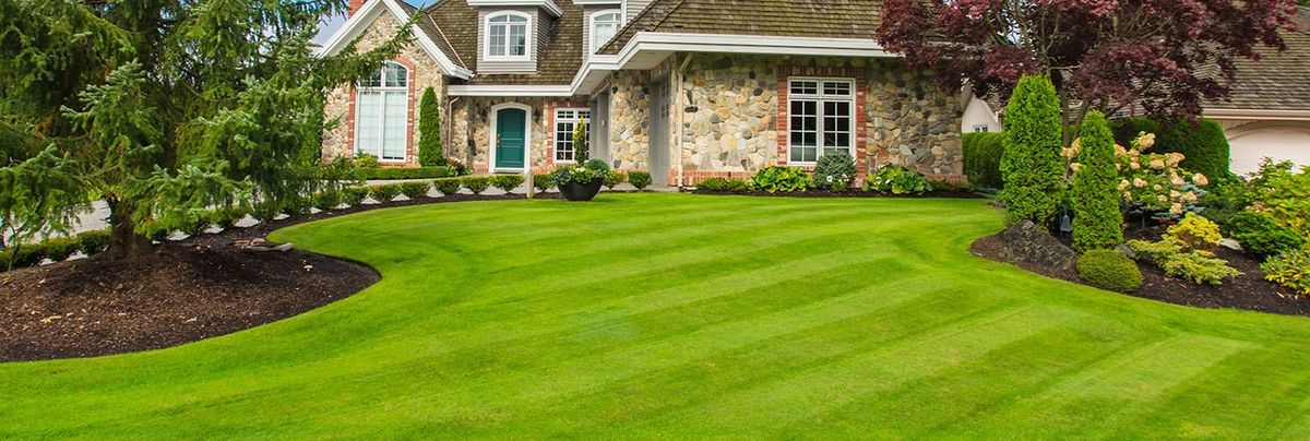 Lawncare - Helena Professional