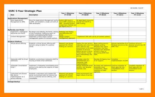 7+ 5 year strategic plan template   packaging clerks