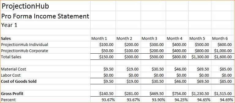7+ pro forma financial statements template | Procedure Template Sample