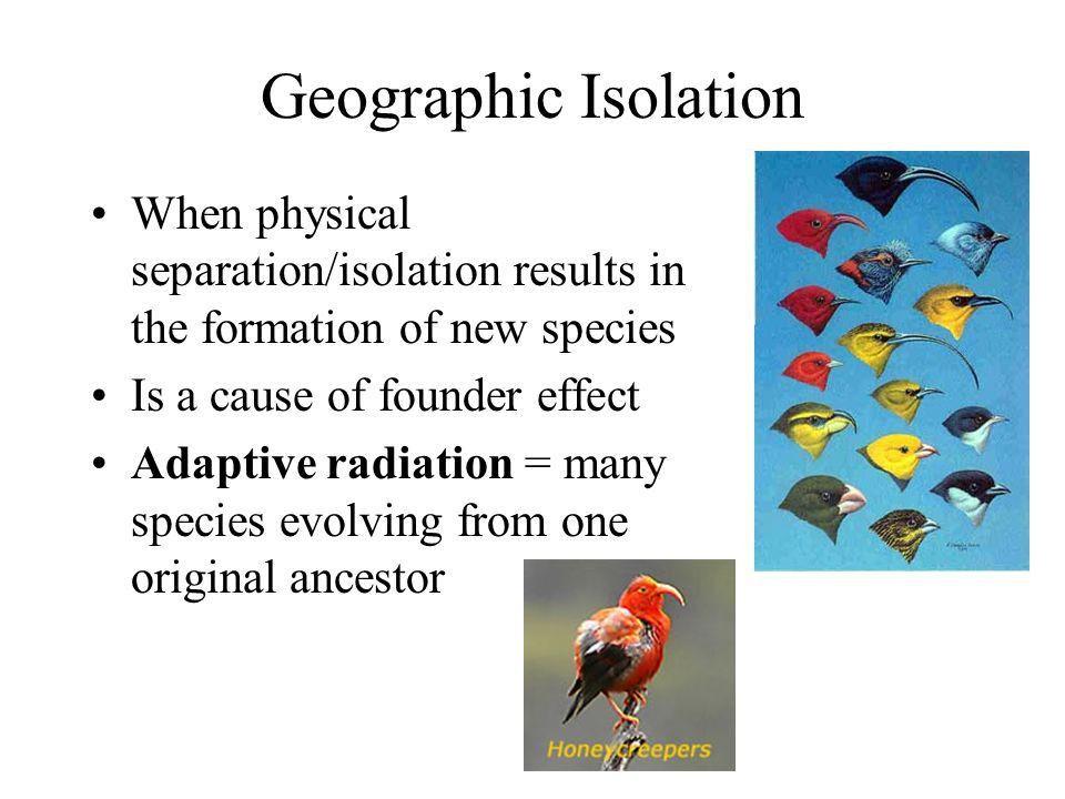 Evolution AP Biology Unit ppt download
