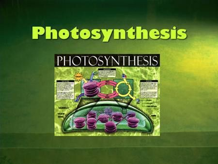 Chapter 8 PART 1 - Photosynthesis $100 $200 $300 $400 $500 $100 ...