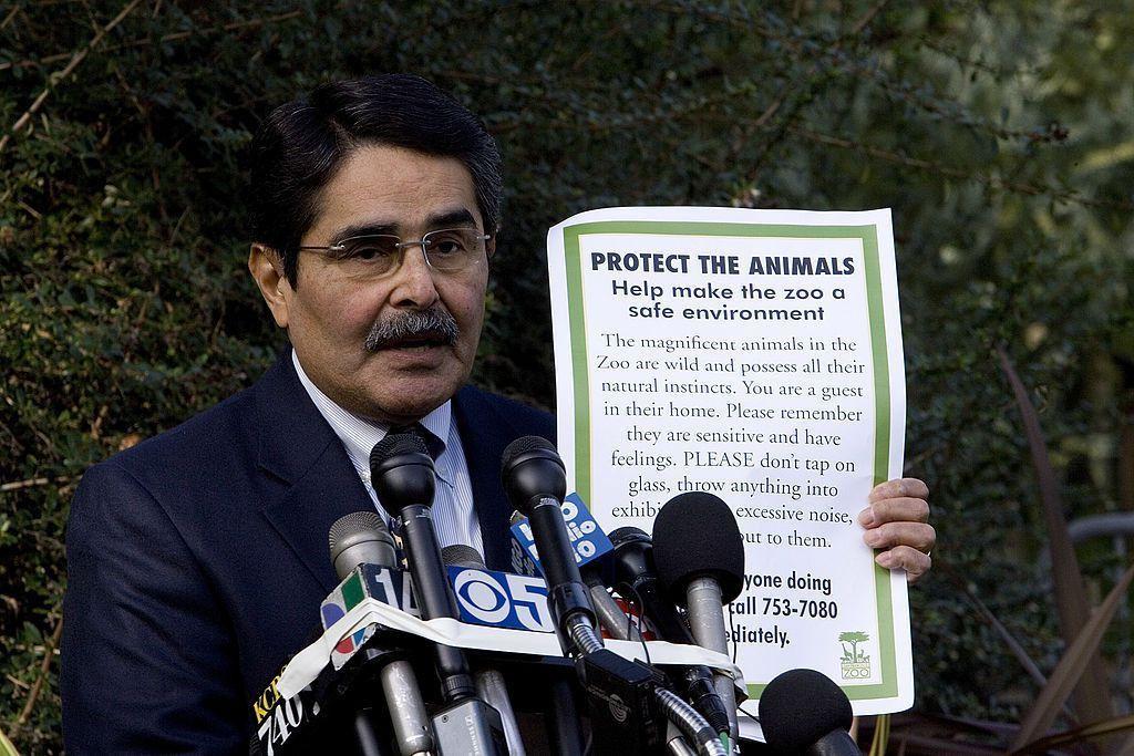 Zoo Director Job Description and Career Profile