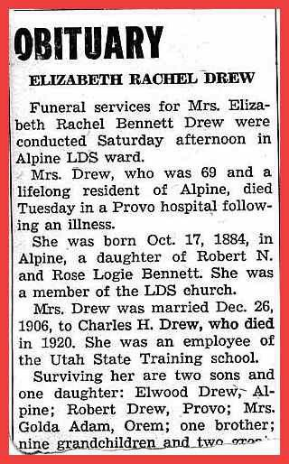 Newspaper Obituary Template. obituary instructions and example ...