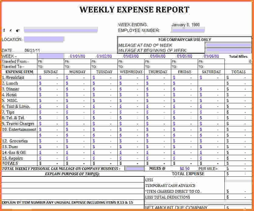 Excel Report Template.Weekly Report Template.gif - Sales Report ...