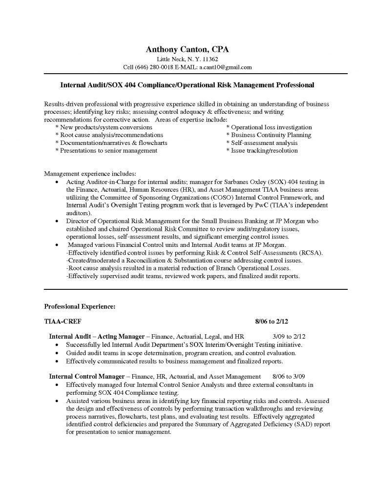 Internal Auditor Resume | Jobs.billybullock.us