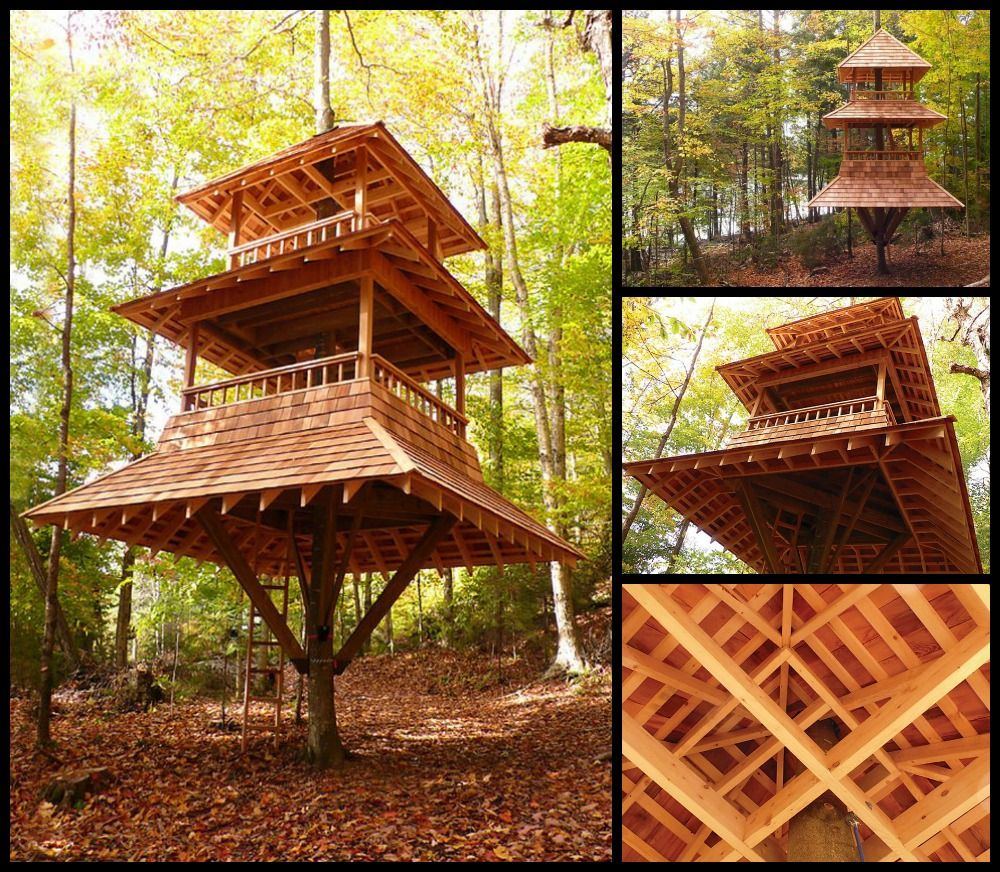 Longwood Gardens Treehouse And Nelson On Pinterest