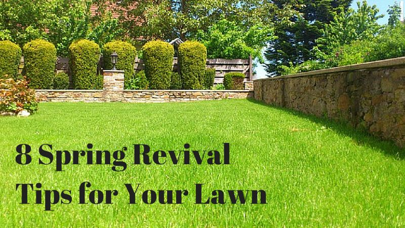 8 Spring Revival Tips for Your Lawn | Nashville Lawn Care