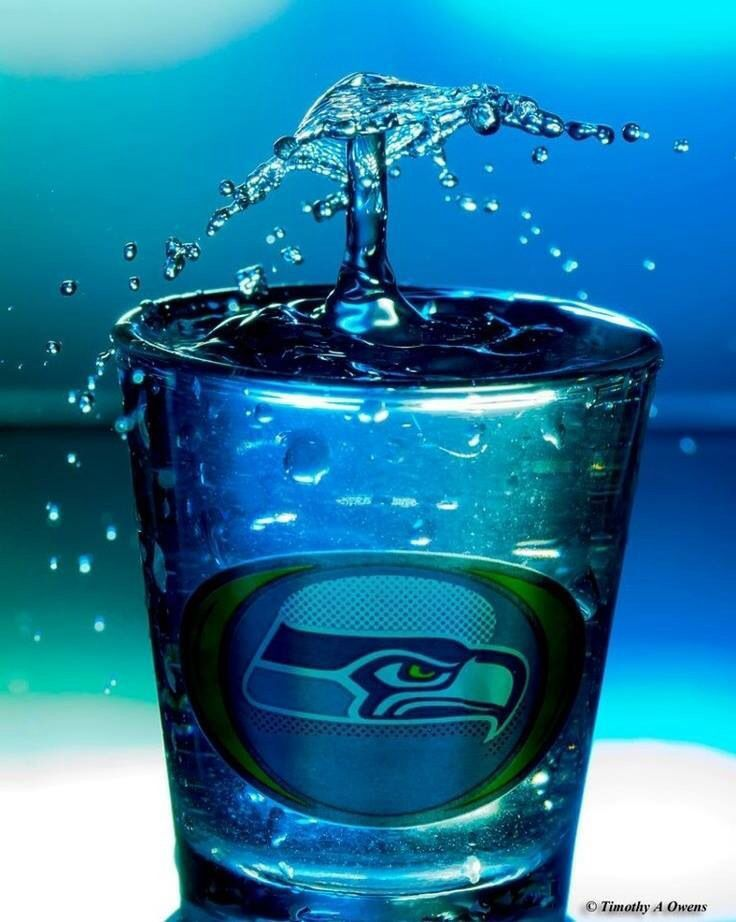 12 best Beer images on Pinterest | Seattle seahawks, Seahawks shop ...