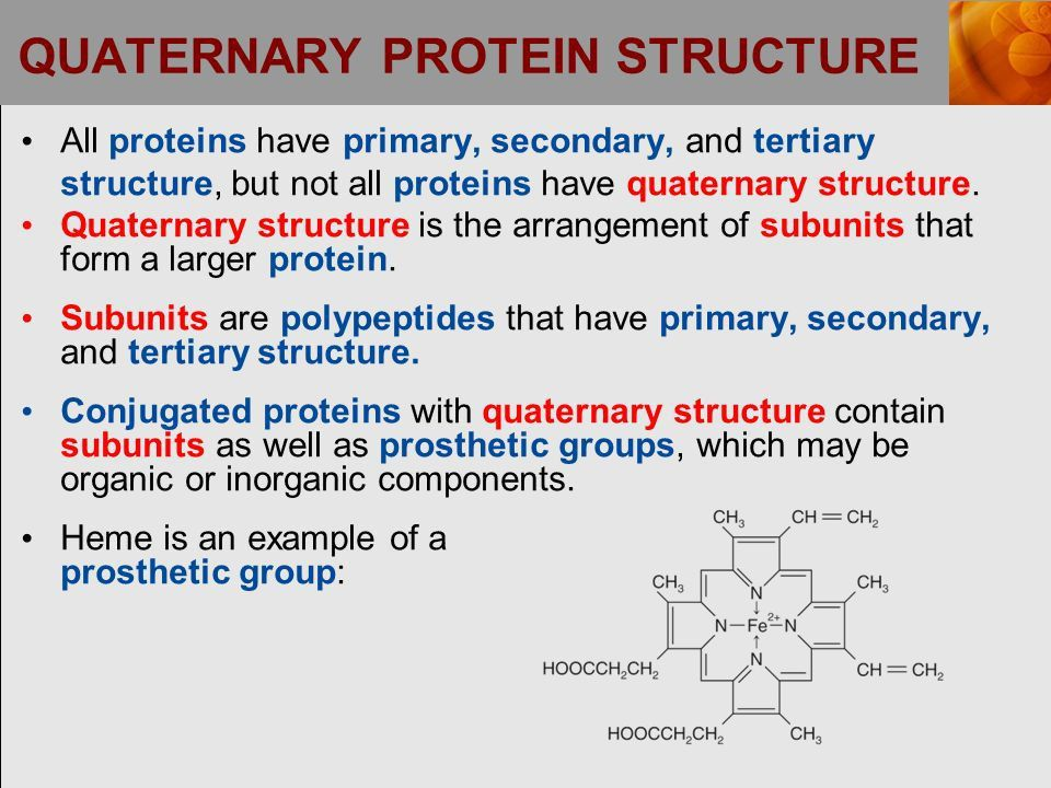 PROTEIN FUNCTIONS. PROTEIN FUNCTIONS (continued) - ppt download