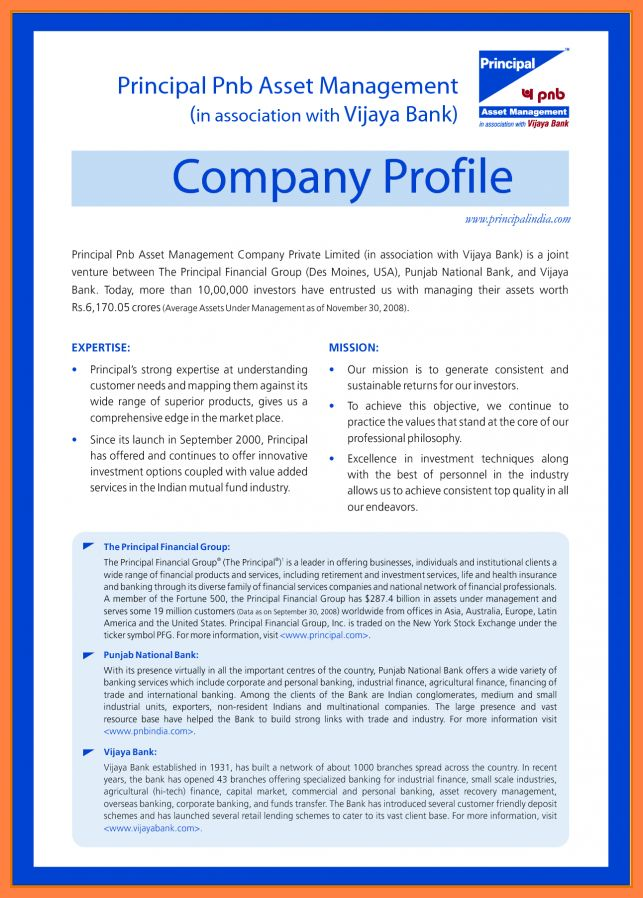 10+ business profile template example | Bussines Proposal 2017