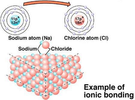 How are hydrogen bonds different from covalent and ionic bonds ...