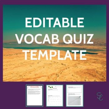 Sanity Savers Series: Editable Vocabulary Quiz Template by Spark ...