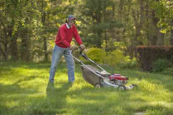 You Can Earn Extra Cash With a Lawn-Mowing Business - Homesteading ...