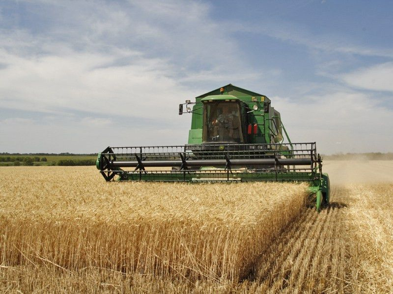 The Crop Insurance Audit - Are You Prepared? - Brechbuhler Scales ...