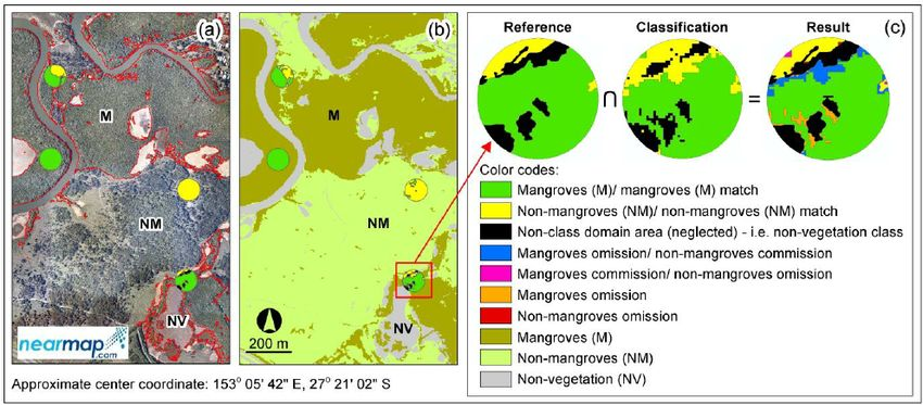Example of mangroves and non-mangroves area-based accuracy ...