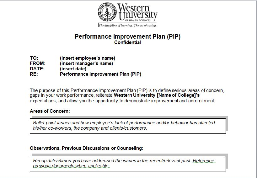 Performance Improvement Plan Sample Template   Excel Tmp