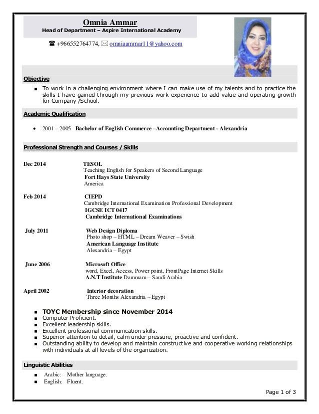 make new resume example on how to make a resumes template pdf cv