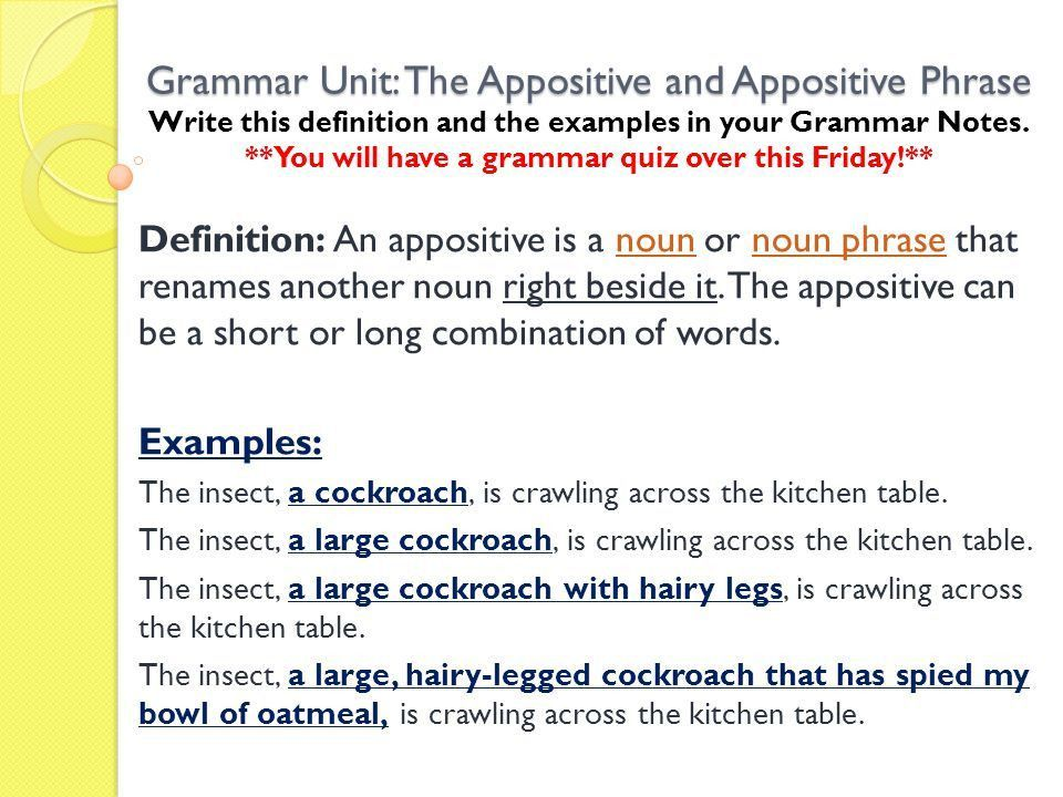 Grammar Unit: The Appositive and Appositive Phrase Write this ...