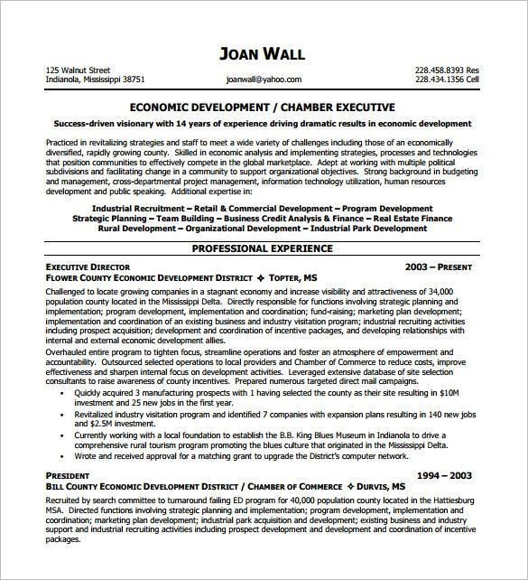 Executive Resume Template -12+ Free Word, Excel, PDF Format ...