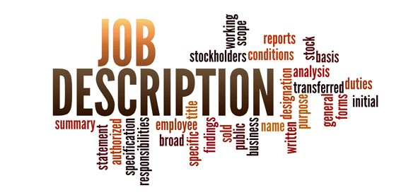 Sales Executive Job Description : Responsibilities and Skills -