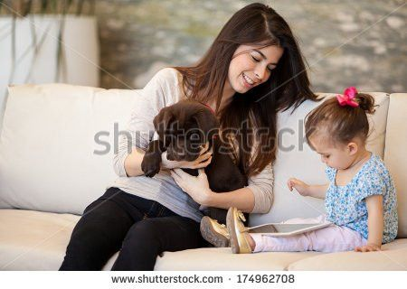 Pretty Young Babysitter Looking After Puppy Stock Photo 174962708 ...