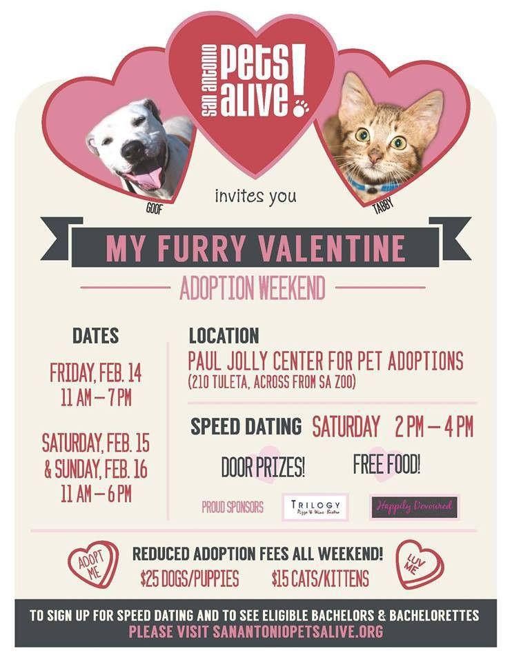 7 Valentine's Day Pet Adoption Posters | Pet Adoption & Animal ...