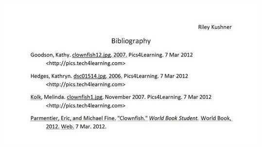 of Sample Bibliography For Websites - Bibliography Format Examples ...