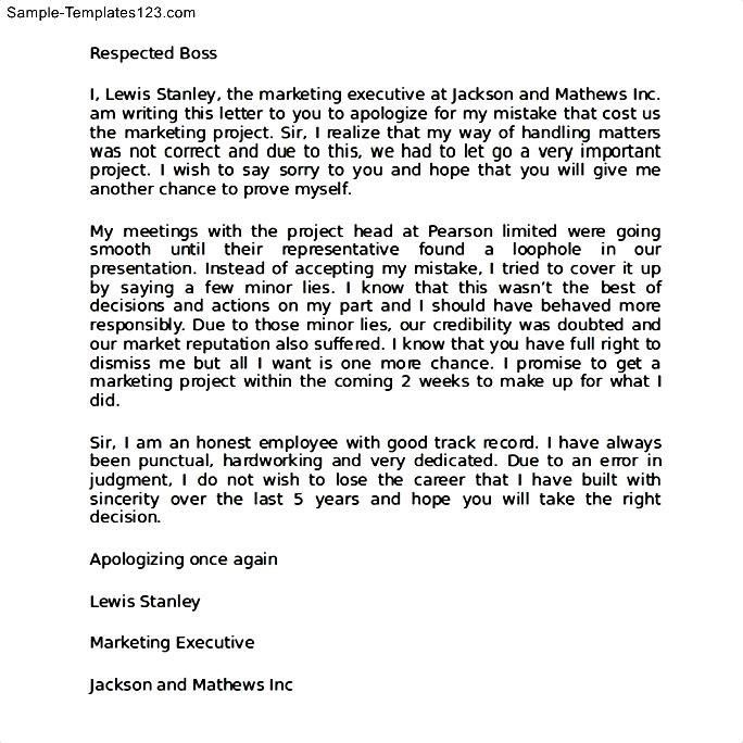 Apologize Letter For Mistake Apology Letter For Mistake 8