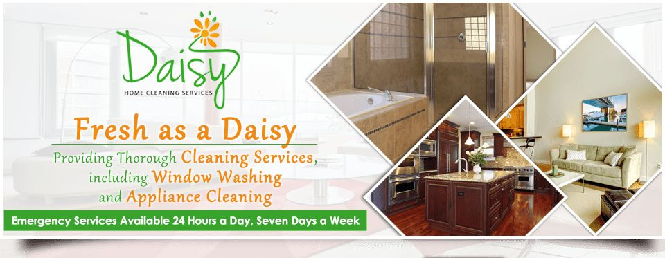 Home Cleaning, Commercial Cleaning, Daisy home cleaning services ...