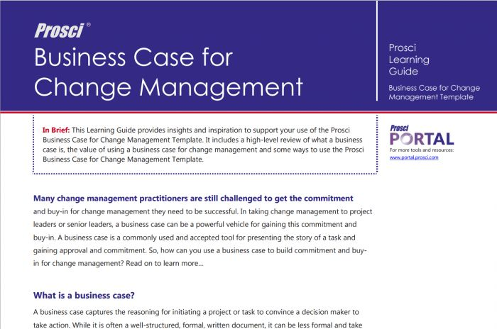 Business Case for Change Management Template