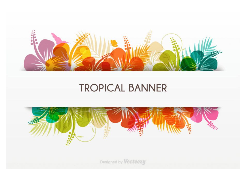 Top 30 Free Banners Templates in PSD & AI 2017 - Colorlib