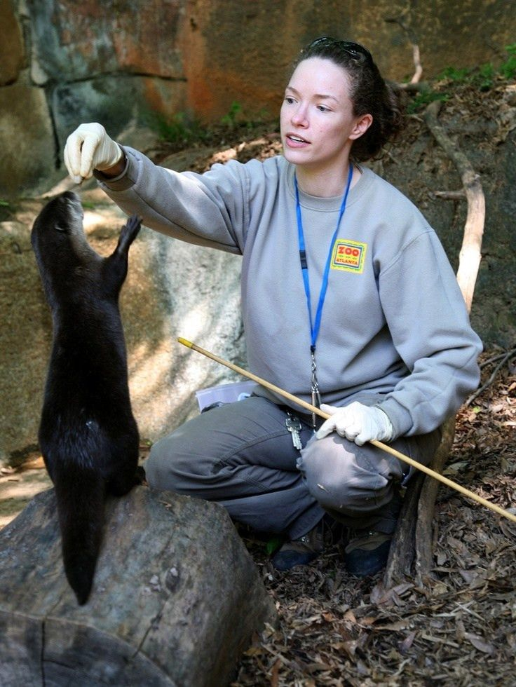 111 best I Want To Be A Zookeeper images on Pinterest | Zoos ...