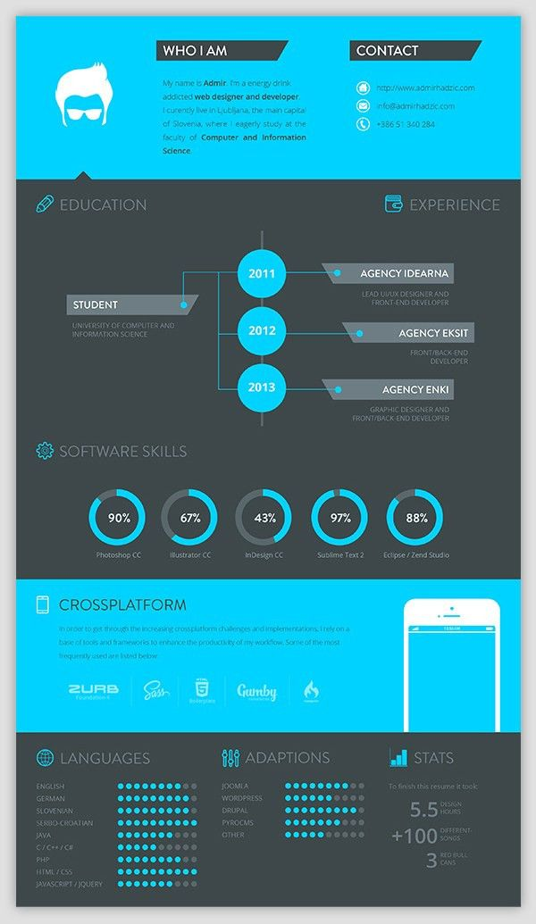 30+ Examples of Creative Graphic Design Resumes (Infographics ...