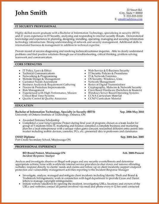 Professional Resumes Format. Experienced Professional Resume ...