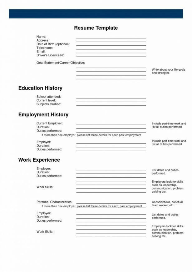 Curriculum Vitae : Best Place To Make A Free Website Depaul Blue ...