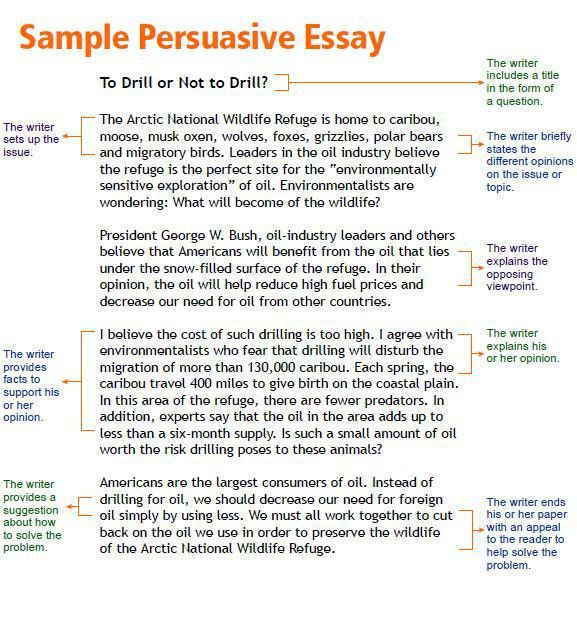 example of essays types of argumentative essays illustration and what is a illustration essay