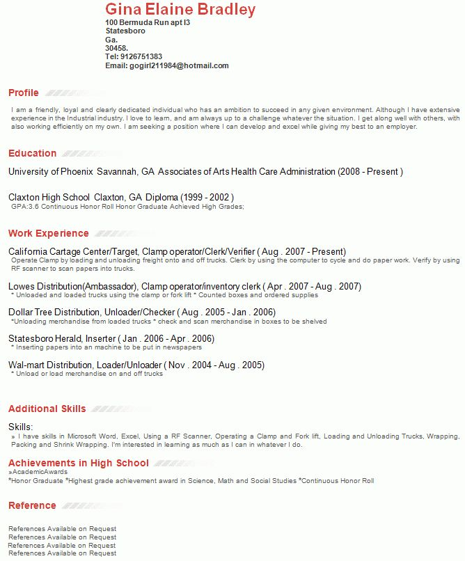 Download Resume Example Profile | haadyaooverbayresort.com