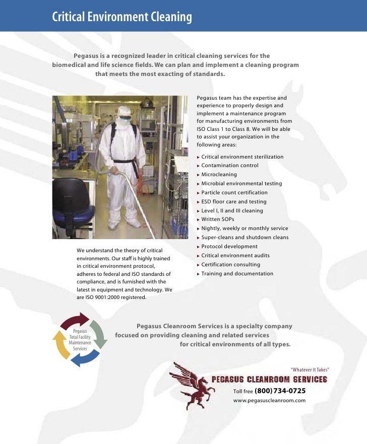 Pegasus Building Services Brochure