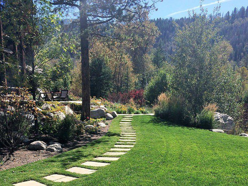 Native Eco Systems - Landscape Maintenance - Steamboat Springs, CO