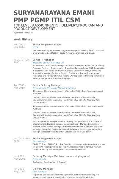 Senior Program Manager Resume | The Letter Sample
