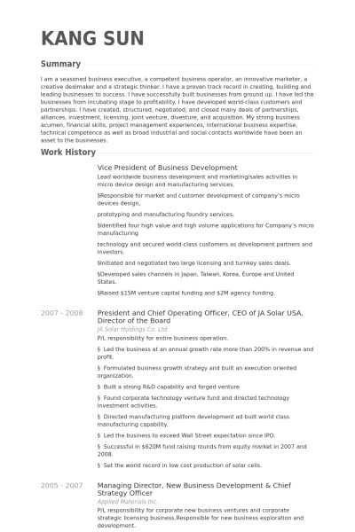 Vice President Of Business Development Resume samples - VisualCV ...