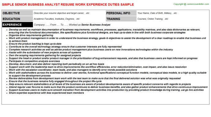 Senior Business Analyst Job Title Docs