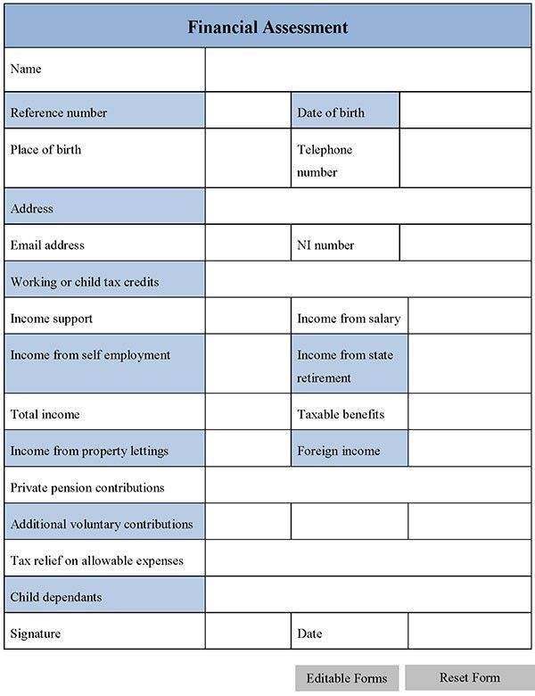 Financial Assessment Form | Editable Forms