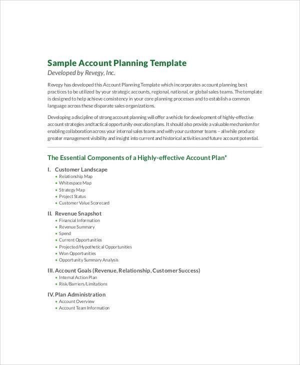 7+ Account Plan Templates -Free Sample, Example Format Download ...